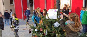 weihnachtsbaum_aktion_8_031215_1200