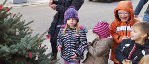 weihnachtsbaum_aktion_9_031215_1200